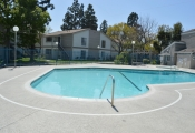 concrete-pool-deck-san-diego-4